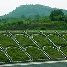 江河治理植生混凝土护坡植生混凝土增强剂厂家图片