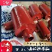 DN150臥式集氣罐,94K402-1標準集氣罐,佰譽碳鋼集氣罐