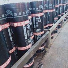 旭泰鑫旭泰生产一5度聚酯胎防水卷材免火烤自粘防水卷材图片