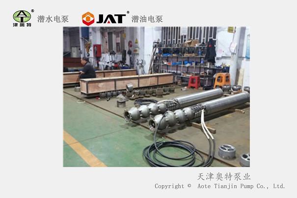 潜海水电泵.jpg
