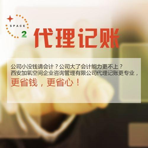 广州财税服务 代理记账 小规模记账等 一般纳税人小规模记账