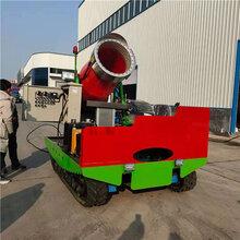 定制滑雪場用造雪機遙控60型噴雪機多角度噴雪機圖片