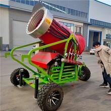 全自动履带造雪机全自动造雪机喷雪机全自动造雪机图片