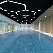 忻州市生產兒童游泳池鋼架式組裝游泳池圖片