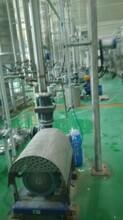 小麥水解蛋白ERS2000高剪切均質機圖片
