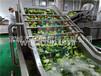 北京優質蔬菜漂燙殺青設備規格齊全,漂燙機