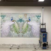 江榕智能3d墻體彩繪機萬能戶內外墻面背景廣告設備壁畫噴繪打印機圖片