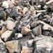 浙江園林風景石天然龜紋石假山石駁岸石
