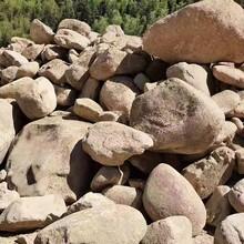 浙江園林景觀石天然水沖石駁岸石鋪路石