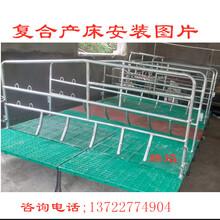 供應黃岡母豬分娩床養豬設備母豬產床騰焰廠家訂做尺寸圖片