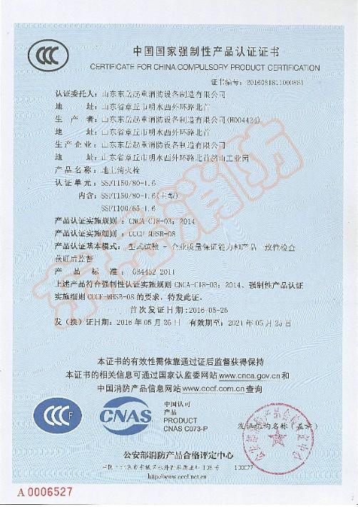 地上消火栓SSFT150-80-1.6,100-65-1.6.JPG