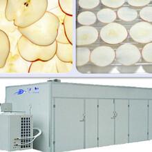 恒芝美香菇烘干房,高效菇類烘干機
