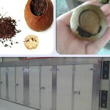 苘麻子干燥機圖片