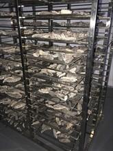 海產品烘干機械設備是哪種-海產品烘干機