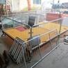 母猪产床保育床复合母猪产床限位栏定位栏复合产保一体