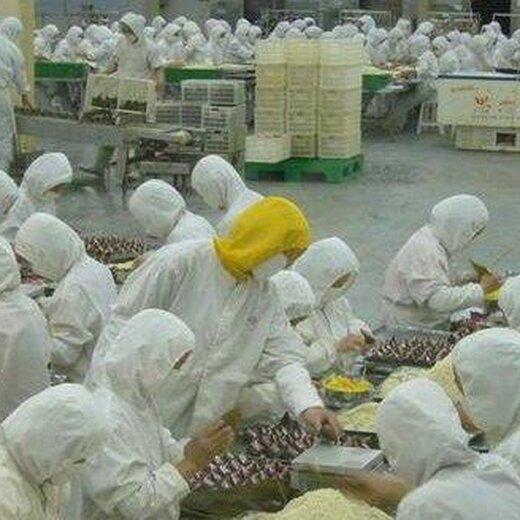 虹口出國勞務洗碗工服務員5萬月薪以色列