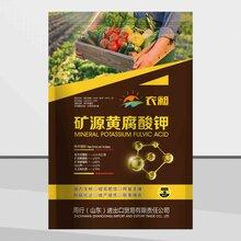 农昶矿源黄腐酸钾,生根肥,抗寒暖根肥,冲施肥,滴灌肥,水溶肥图片