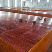 广西建筑模板厂家建筑模板红模板批发图片
