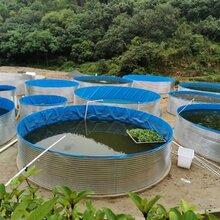 镀锌板帆布水池高密度养殖鱼池圆形带支架水池养殖水箱图片