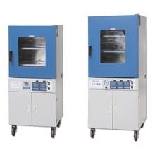 DZF-6050B真空干燥箱/臺式定時真空干燥箱/數顯真空干燥箱價格圖片