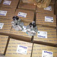 Perkins帕珀鉑金斯發動機配件水泵代理商圖片