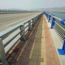 山東聊城橋梁護欄不銹鋼護欄綠洲生產廠家圖片