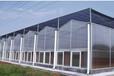 溫室大棚外遮陽網的選擇和安裝