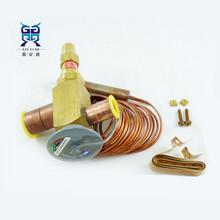 SPORLAN斯波蘭OVE-20-CP100熱力膨脹閥2836mm焊接口圖片