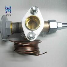 SPORLAN斯波蘭VVE-100-CP100熱力膨脹閥36mm焊接口159578圖片