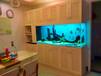無錫魚缸清潔上門服務魚缸安裝維修洗換水魚缸清洗消毒保潔