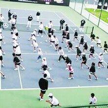 双菲(上海)网球俱乐部