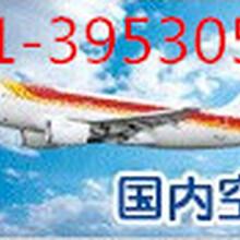 上海航空托运宠物价格查询