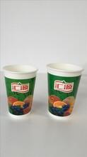 一次性纸杯纸碗-武汉聚金龙餐具