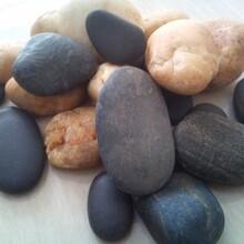 兰州鹅卵石,哪里好,还是找绿邦鹅卵石厂
