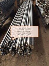 HRB500现货价格20精轧螺纹钢20精轧螺纹钢20精轧螺纹钢拉杆