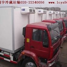 广州到青岛冷藏运输公司