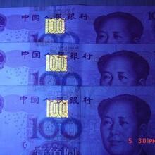 供应最新小型验钞\检测专用紫外光LED模块图片