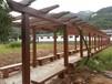 供应河南郑州天艺仿木长廊模具