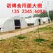 新型温室大棚设计图温室大棚阳光板大棚承建安装郑州诺博