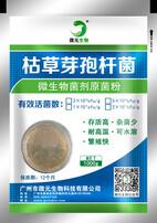 枯草芽孢桿菌,飼料添加劑,微生態益生菌,芽孢桿菌廠家圖片