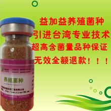 新乡益加益发酵床养猪菌种厂价直销图片