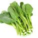 广州有机蔬菜供应基地广州蔬菜配送广州有机蔬菜