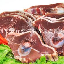安徽天行健乌骨羊提高免疫力改善精气神