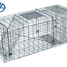 折叠式诱捕器折叠动物捕捉笼折叠式捕捉器图片