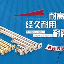 苏州医疗配件锁芯型铆钉销钉轴汽车零配件厂