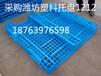 枣庄薛城区塑料托盘公司批发零售台儿庄双面塑料托盘1212
