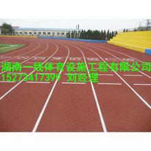 湘潭无气味无毒环保塑胶跑道材料配师父全省施工