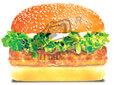 汉堡技术培训,学习汉堡技术要多少钱?学习汉堡技术图片