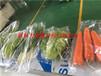 自動蔬菜包裝機