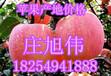 今期山東紅富士蘋果價格微微有所上漲
